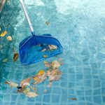 cleaning leaves from a pool