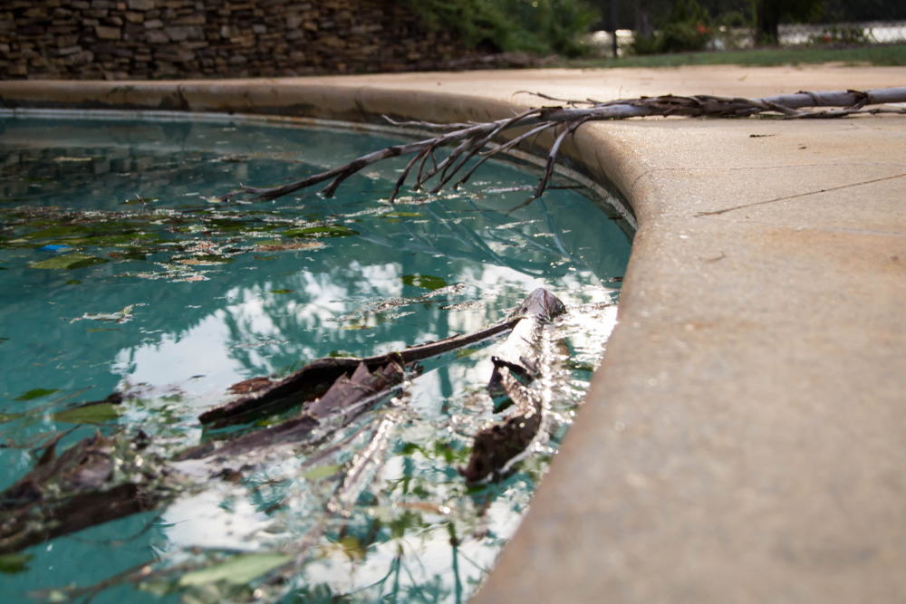swimming pool with yard debris floating in it from a hurricane